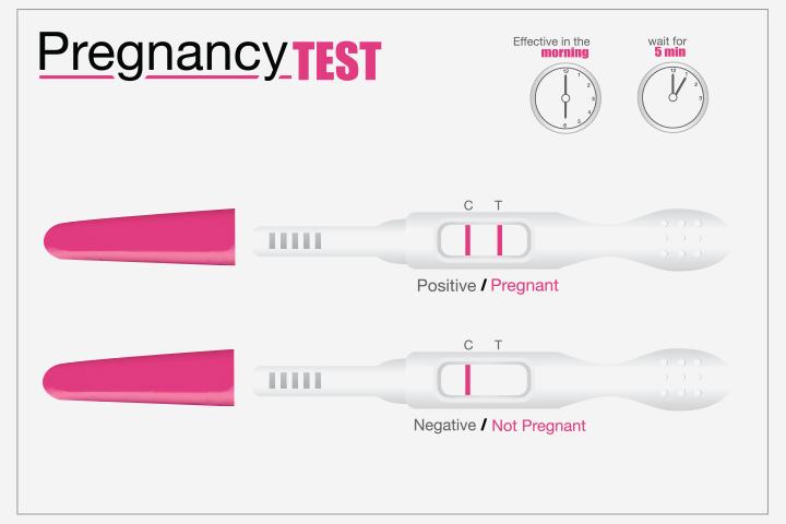 2 Weeks Past Period Negative Pregnancy Test