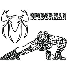 Crouching-Spiderman