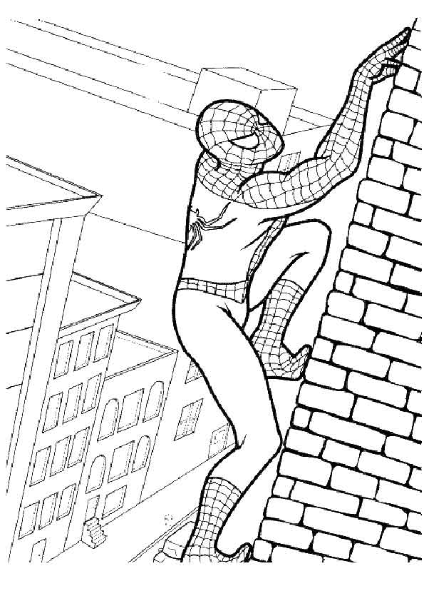 The-Spiderman-Fights-Against