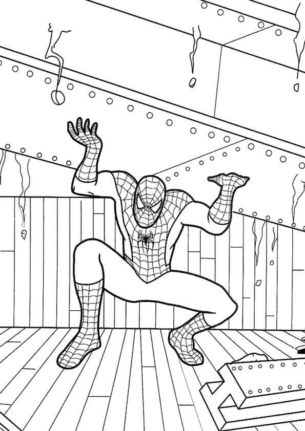 The-Spiderman-Splitting