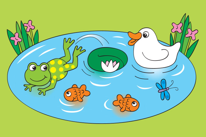 The Tale Of Two Fishes And A Frog