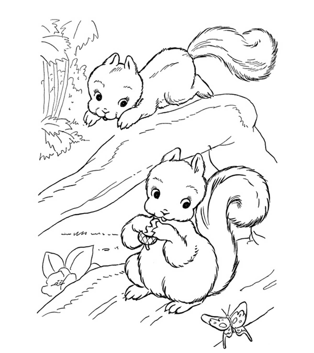graphic relating to Printable Squirrel Target referred to as Squirrel Coloring Sheet Photograph Al - Sabadaphnecottage