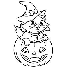 Scary-Halloween-Cat-see