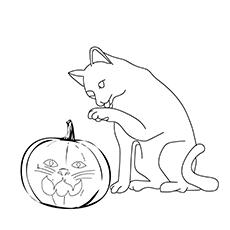 The Cat Pumpkin