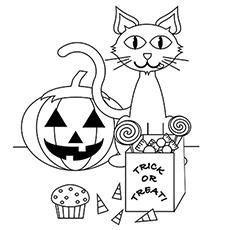 a-cute-halloween-cat1