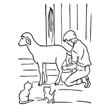 A Cute Goat Coloring Cat Coloring Pages