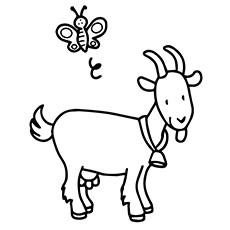 Cute Goat-Coloring chevre Coloring Pages