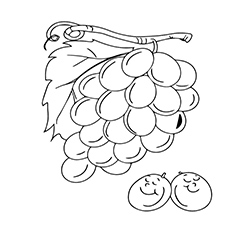 A-Grapes-laughing