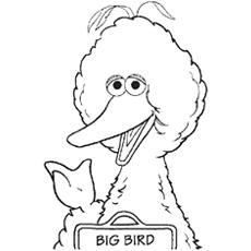 Big-Bird-talking