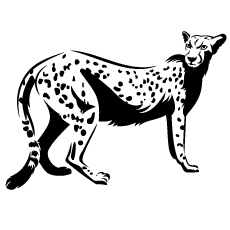 Cheetah-outline