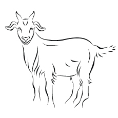 Goat Ink Line Art Coloring Pages