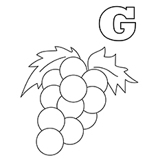 The-'g'-for-grapes-16
