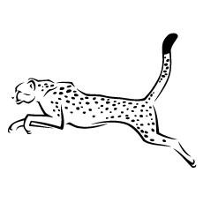 The-Cheetah-jumping