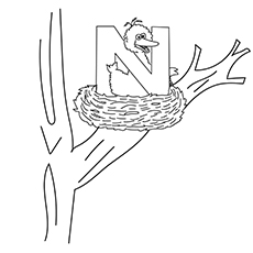 The-bird-nest-16