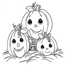 The-pumpkin-family