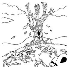 The-spooky-pumpkin-patch