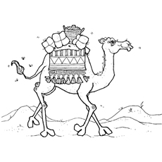 camel-carrying-goods