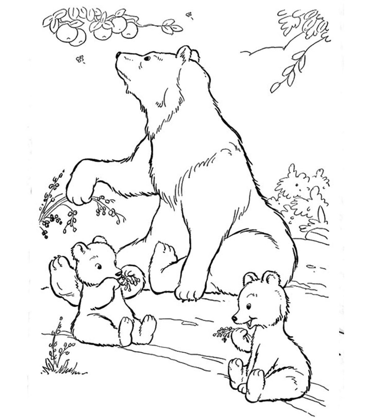 Hibernating Animals Preschool Animals In Winter Printable ... | 1350x1200
