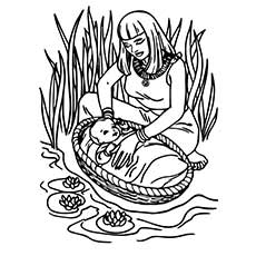 Baby-moses-Grass