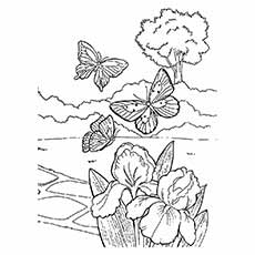 Butterflys Flying in Spring Weather Coloring Page for Kids