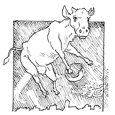 The-Cow-Jumping-Over-The-Moon