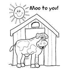 The-Cow-Mooing