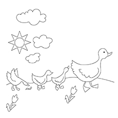 Ducks in Spring Sheets to Color