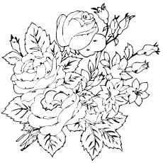 group-of-rosas