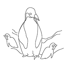 mother-penguin-with-her-kids1-16