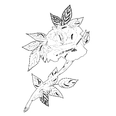 Single Rose with Leaves Printable to Color