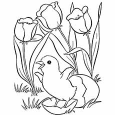 Coloring Sheet of Spring Flower and Chick coming out of Eagg