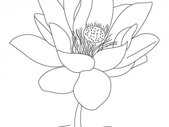 10 Best India Coloring Pages Your Toddler Will Love To Learn & Color