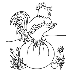Christian-Rooster