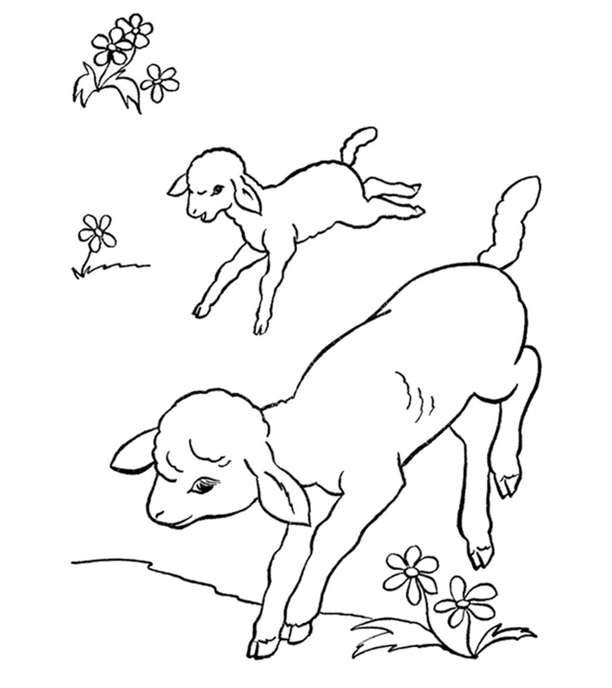- Top 10 Farm Coloring Pages Your Toddler Will Love To Color