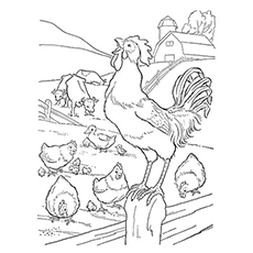 Farm-House-Rooster