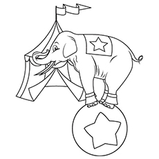 top 20 free printable elephant coloring pages online