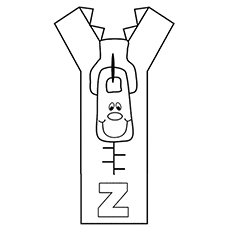 The-Zipping-'Z'1