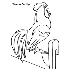 Time-To-Get-Up-Rooster
