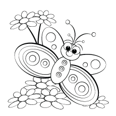 butterfly-and-daisy