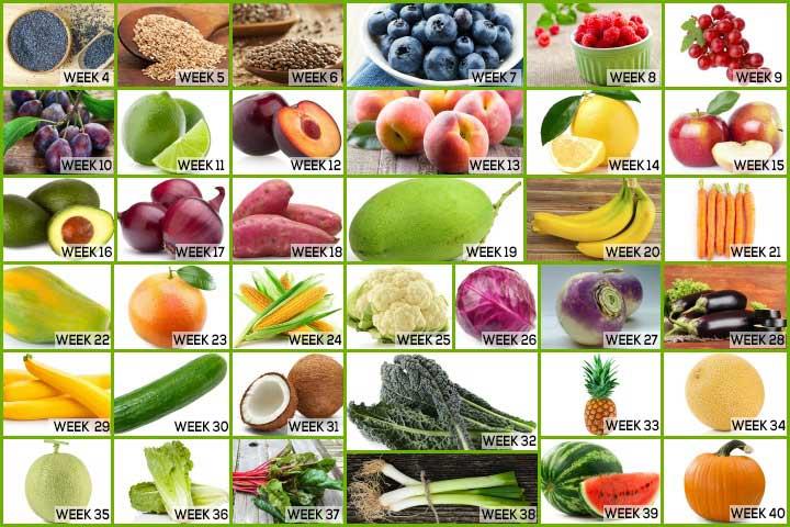 Fruit Comparison