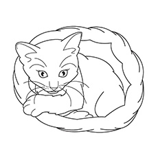 Free Printable Coloring Sheet of Realistic Cat Sitting In Basket