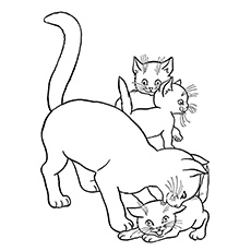 The-Cat-With-Three-Kittens