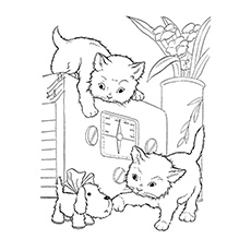 Coloring Sheet Cats are Playing with Small Puppy