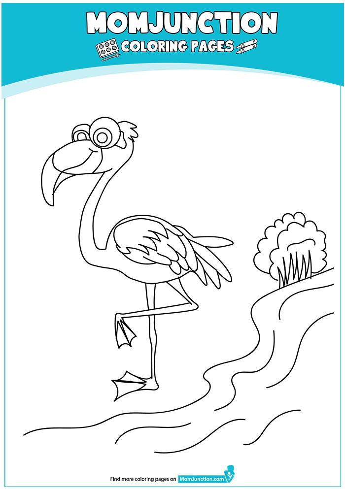 The-Flamingo-16