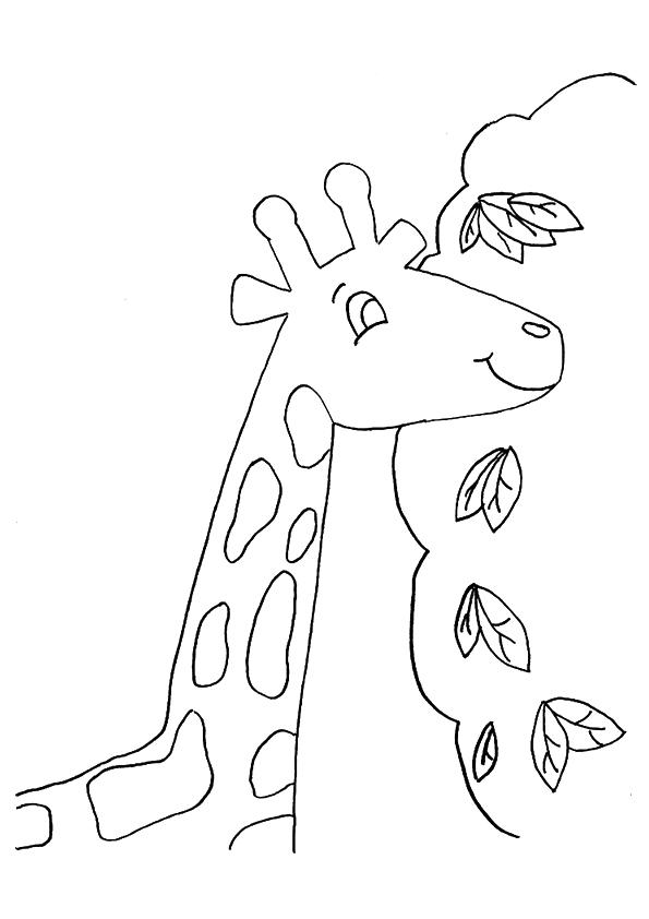 The-Giraffe-Near-A-Tree