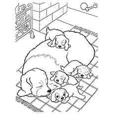 The-Mother-Dog-With-Pups