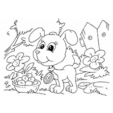 The-Pup-In-The-Garden