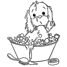 The-Puppy-Taking-A-Bubble-Bath