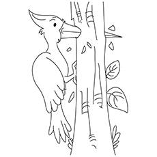 The-Woodpecker