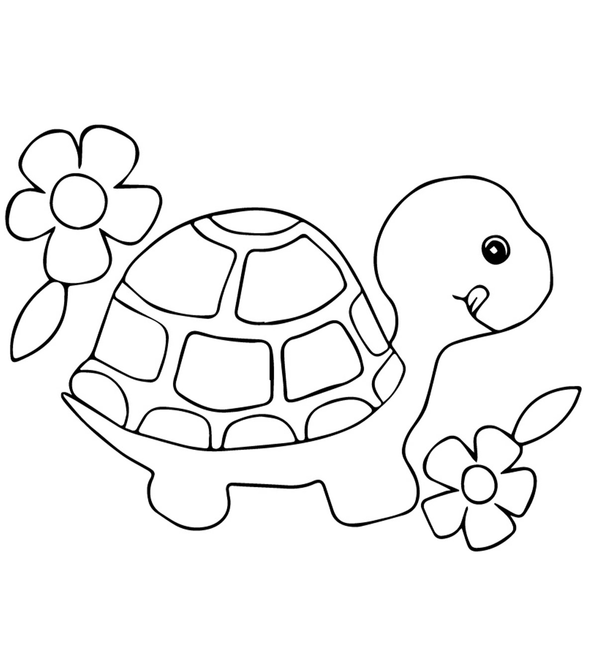 image relating to Turtle Template Printable identified as Final 20 Cost-free Printable Turtle Coloring Web pages On line